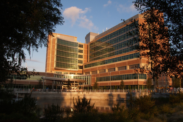 Uf Health South Tower