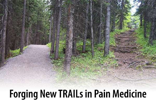two trails diverging in the forest