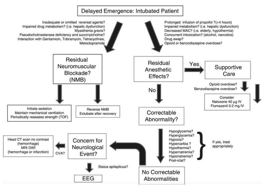 Delayed emergence flowchart
