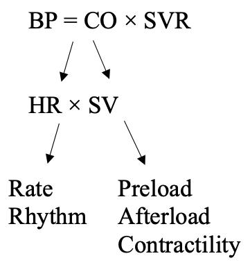 hypotension equation