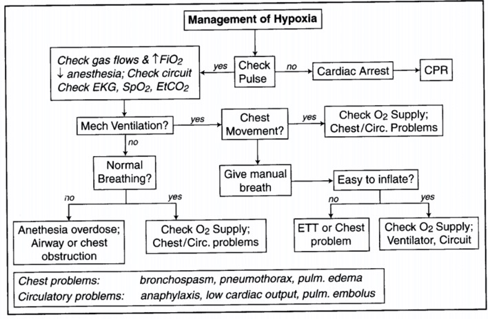 Hypoxia management algorithm